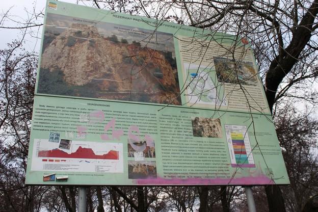 kielce-kadzielnia-rezerwat-przyrody-nieozywionej