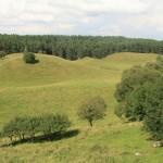 Polodowcowa rzeźba terenu w Suwalskim Parku Krajobrazowym