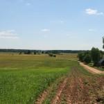 Rolniczy krajobraz Doliny Biebrzy
