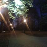 Park na Górce nocą