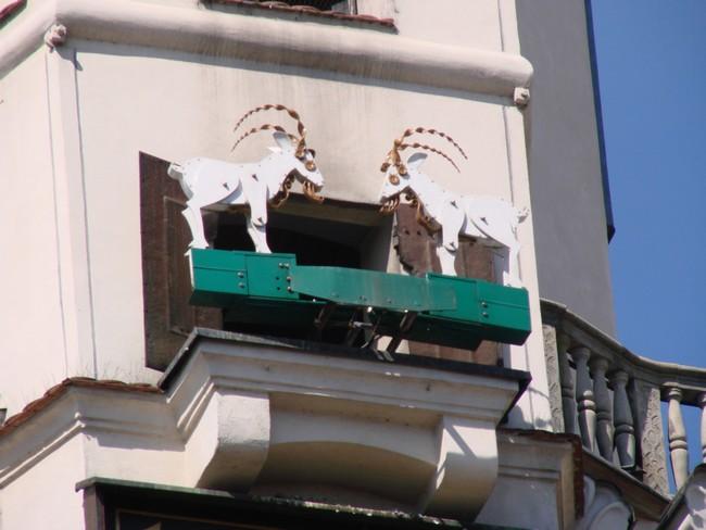 Poznańskie koziołki